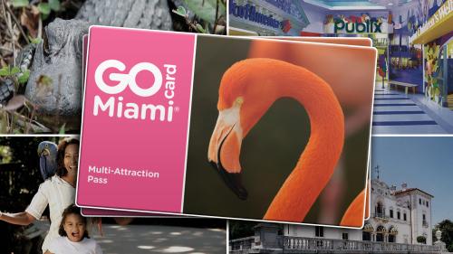GoCard Miami