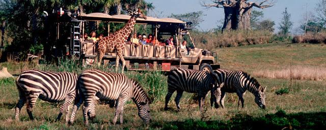 Kilimanjaro Safaris Expedición en Animal Kingdom