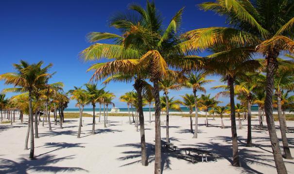 Otras playas buenas en Miami