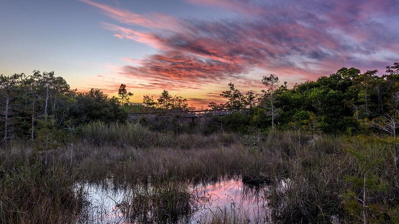 Everglades National Park en Flórida